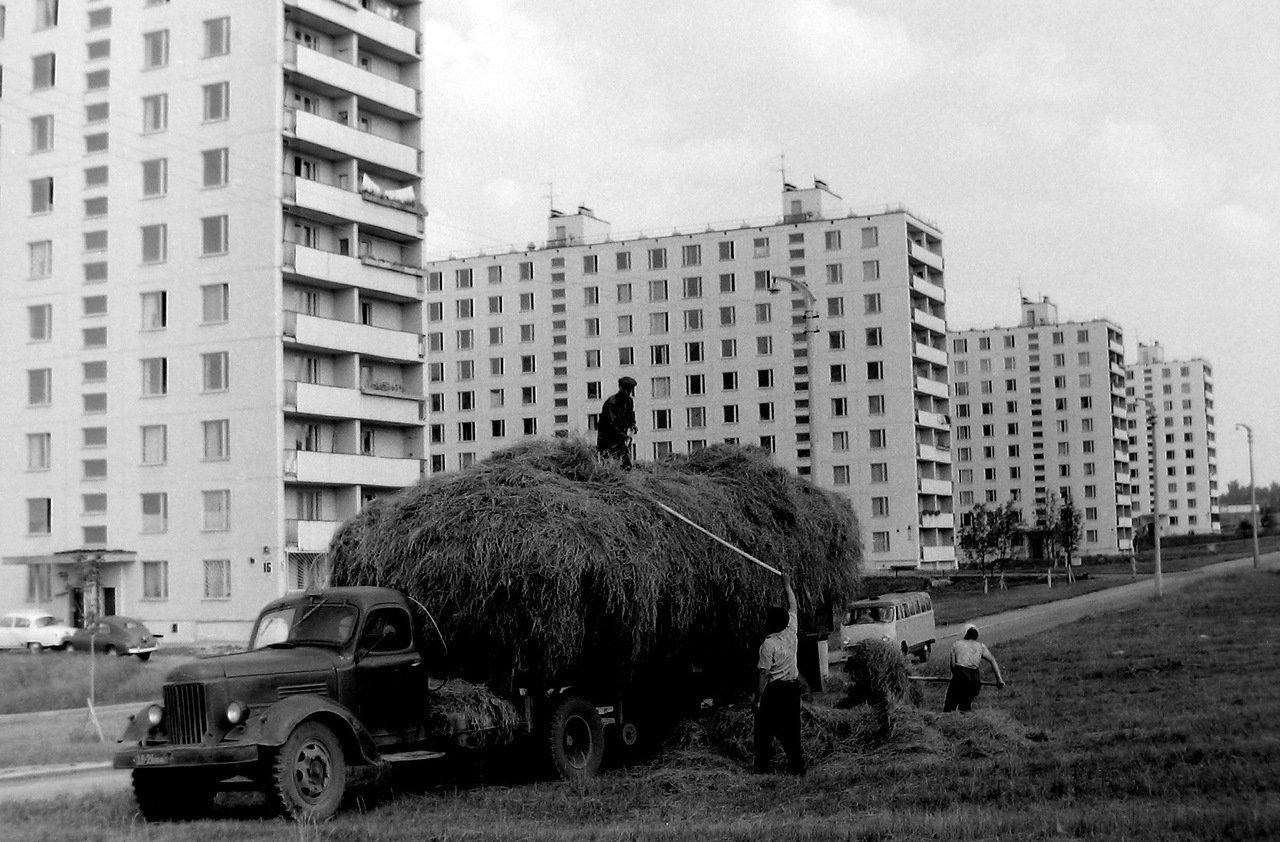 1967 г.